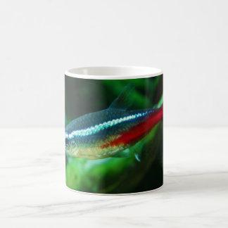 Mug Tétra Paracheirodon au néon Innesi de poissons