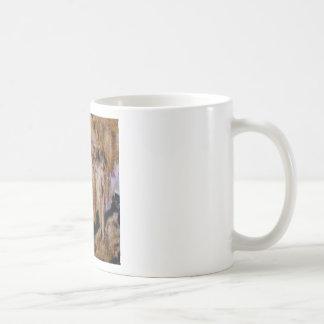 Mug texture de pilier dans les roches