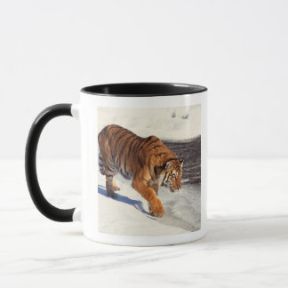 Mug Tigre sibérien