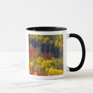 Mug Trembles colorés en canyon Utah de Logan dans