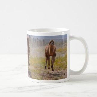 Mug Trois jeunes chameaux
