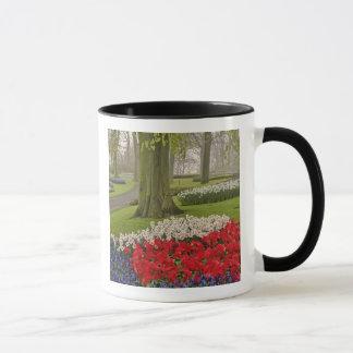 Mug Tulipes et jonquilles, jardins de Keukenhof,