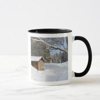 Mug Une scène neigeuse au peu d'étang de Lyford d'AMC