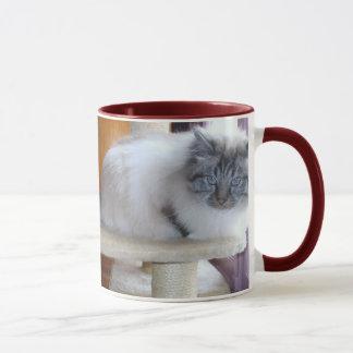 Mug U'Onyx Cardiff Baby Blue 002