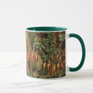 Mug Usines vintages de mousse par Ernst Haeckel,