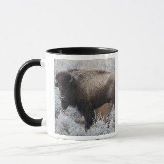 Mug Veau de bison de soins de vache, Yellowstone