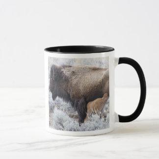 Mug Veau de bison de soins de vache, Yellowstone 2