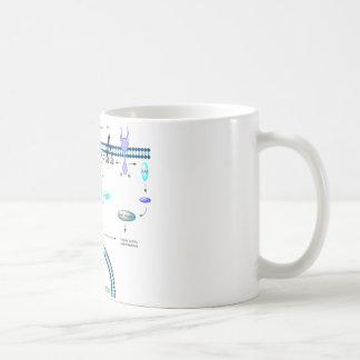 Mug Voie de GPCR