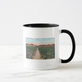 Mug Vue aérienne des vignobles et des caves