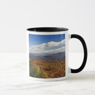 Mug Vue d'automne des Appalaches du sud