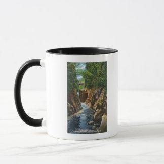 Mug Vue des automnes et du pont de rivière d'Ausable