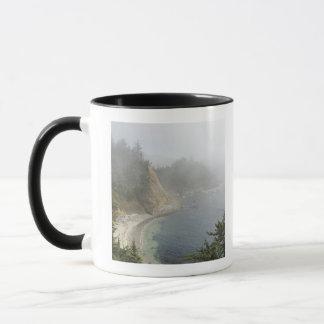 Mug Vue des Etats-Unis, Orégon, océan, cap Arago,