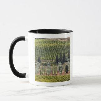 Mug Vue élevée de vignoble et d'oliviers