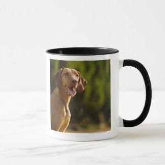 Mug Weimaraner