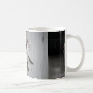 Mug weimaraner-chiot