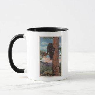 Mug Yellowstone, WYView d'ours noir dans l'arbre