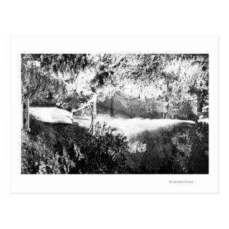 Multnomah tombe rivière de PhotographColumbia, OU Carte Postale