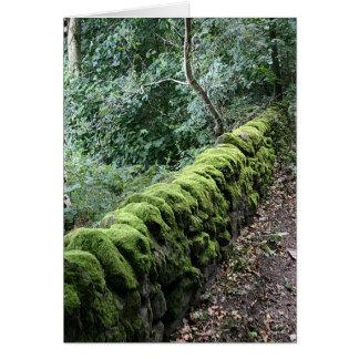 Mur de pierres sèches couvert dans la mousse carte de vœux