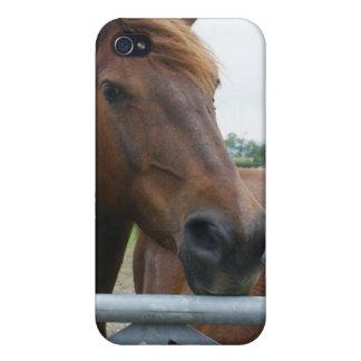 Mustang au cas de l'iPhone 4 de barrière iPhone 4 Case