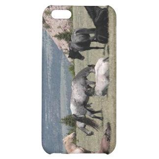Mustangs Étuis iPhone 5C