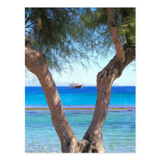 Mykonos, la vie de la Grèce, île Cartes Postales