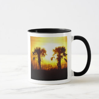 N.A., Etats-Unis, la Caroline du Sud, Charleston. Mugs