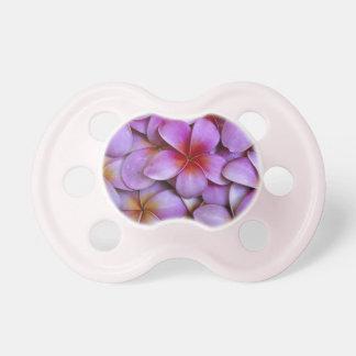 N.A., Etats-Unis, Maui, Hawaï. Fleurs roses de Tétines Pour Bébé