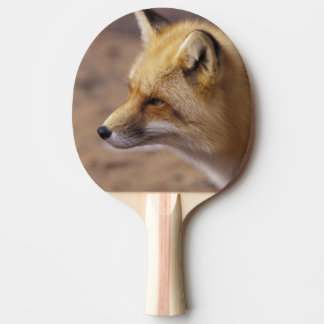 Na, Canada. Fox rouge Raquette Tennis De Table