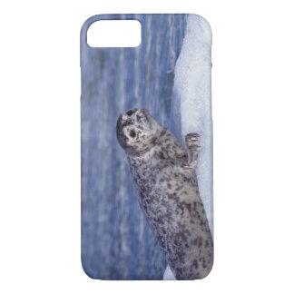 Na, Etats-Unis, Alaska, Alaska du lessive-est, Le Coque iPhone 7