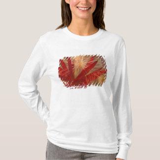 Na, les Etats-Unis, l'Alaska, Denali NP, Fireweed T-shirt