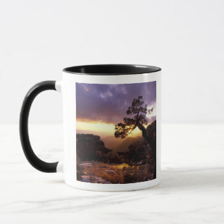 Na, les Etats-Unis, l'Arizona, Tucson, coucher du Mugs