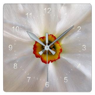 narcisse de blanc de perle horloge carrée