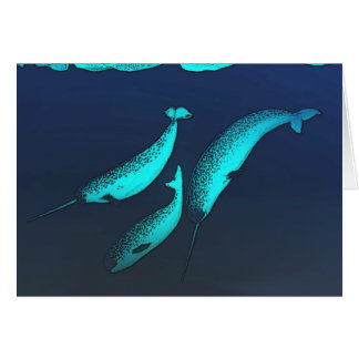 Narwhal Cartes