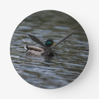 Natation de canard de Mallard Horloge Ronde