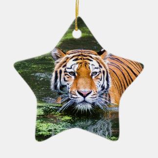 Natation de tigre ornement étoile en céramique