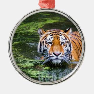 Natation de tigre ornement rond argenté