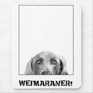 Nation de Weimaraner : Weimaraner dans une boîte ! Tapis De Souris