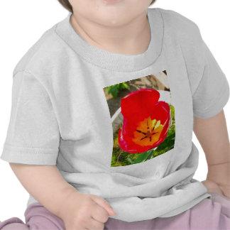Nature à grand F1 T-shirt