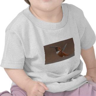 Nature de colibri de Rufus d'Américain d'oiseau T-shirt