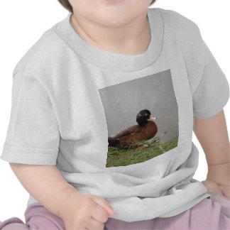 Nature de faune de photographie de canard de lac t-shirts