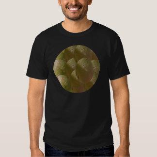 Nature de NOVINO abondante - appréciez la part de T-shirts