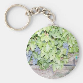 Nature de vigne et photographie d'amateur de vin porte-clés