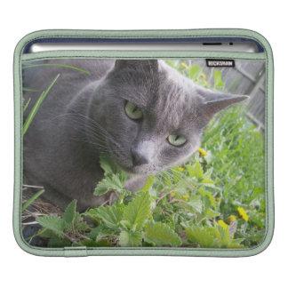 nature grise de chaton de minou de chat d'été poches iPad