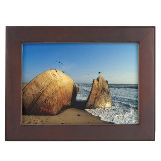 Naufrage sur la plage, côte squelettique, Namibie Boîte À Souvenirs