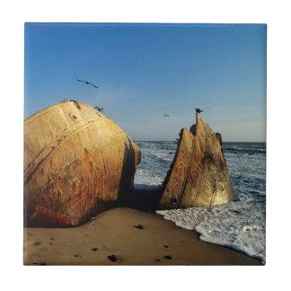 Naufrage sur la plage, côte squelettique, Namibie Petit Carreau Carré