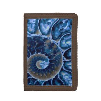 nautilus bleu électrique