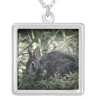 Necklase de lapin pendentif carré