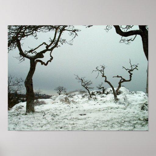 Neige sur le pré de chêne de Garry Posters
