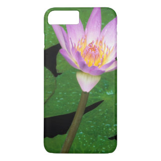 Nénuphar bleu de cap (capensis de Nymphaea) Coque iPhone 7 Plus