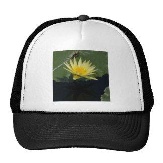 Nénuphar jaune de Lotus Casquette